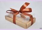 Коробка с пластиковым верхом NATURAL COSMETICS  18,3*10*6 см
